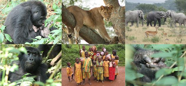 Uganda-Collage